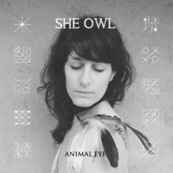 Cover zu Animal Eye von She Owl